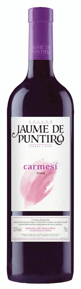 Jaume de Puntiró